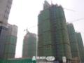 白鹤山·银苑工程进度